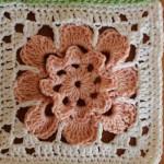 Háčkovaný pouštní květ